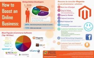 Magento Infographic